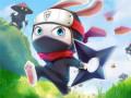 Spel Ninja Rabbit